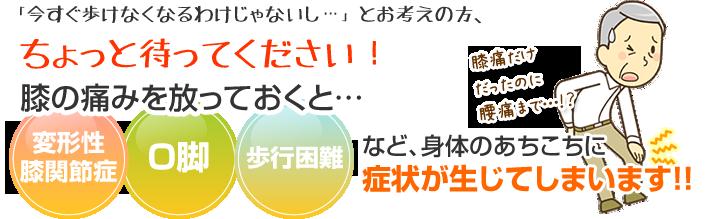 横須賀市北久里浜の鍼灸整骨院ひまわり 膝痛の説明画像