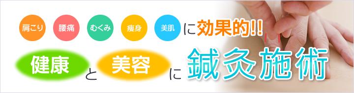 横須賀市北久里浜の鍼灸整骨院ひまわり 鍼灸施術の説明画像