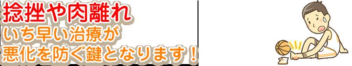横須賀市北久里浜の鍼灸整骨院ひまわり 捻挫、肉離れの画像